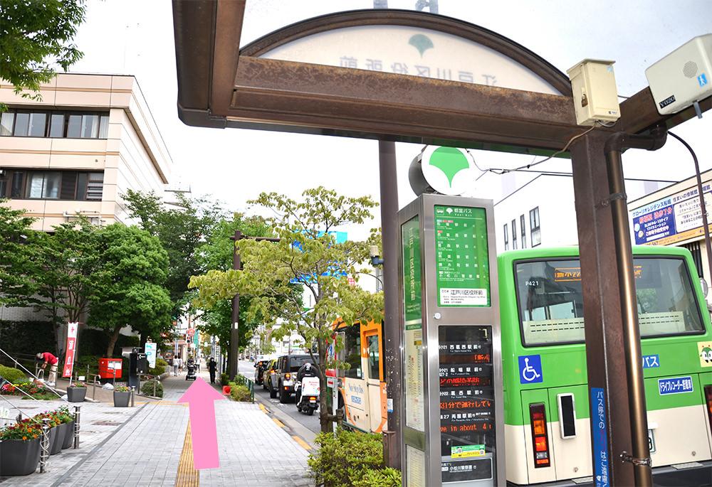 写真:江戸川区役所を正面バス停